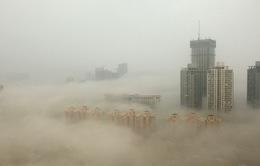 Bắc Kinh trước và sau thời kỳ chìm trong khói bụi