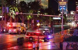 Ô tô lao vào đám đông tại Mỹ, gần 40 người bị thương