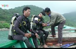 Nghề lặn biển: Đánh cược tính mạng trong cuộc mưu sinh