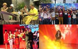 Các chương trình cuối tuần đặc sắc trên VTV3: Chờ đợi chung kết Bước nhảy Hoàn vũ