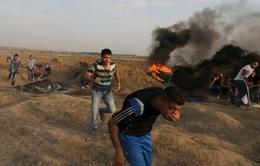 Cảnh sát Israel đánh đập người Palestine