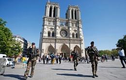 Pháp: Bắt thanh niên âm mưu khủng bố nhà thờ