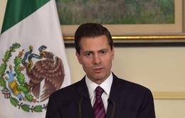 Mexico yêu cầu Ai Cập điều tra vụ bắn nhầm du khách
