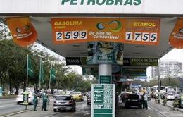 Brazil điều tra nhiều chính trị gia liên quan vụ bê bối Petrobras