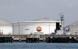 Trung Quốc: Doanh thu Tập đoàn dầu khí Nhà nước sụt giảm hơn 60%