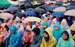 Một năm sau vụ chìm phà Sewol: Nỗi đau chưa nguôi