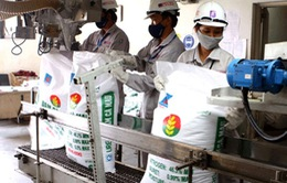 Chi phí sản xuất hóa chất, phân bón sẽ tăng 7% theo giá điện mới