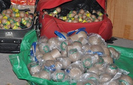 Quảng Ninh bắt vụ vận chuyển hơn 40kg pháo nổ