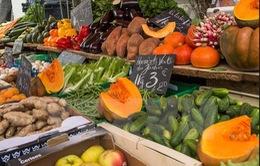 Pháp: GDP tăng trưởng 0% trong quý II/2015
