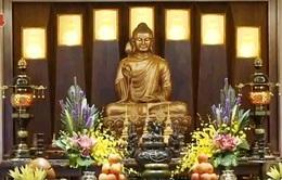 Phật giáo trong đời sống doanh nhân Việt
