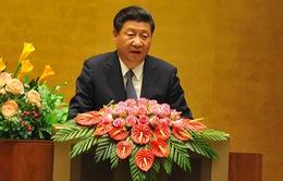 """""""Việt Nam - Trung Quốc cần xuất phát từ đại cục để giải quyết bất đồng"""""""