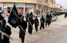 Phiến quân IS đối mặt với bệnh hoại tử da