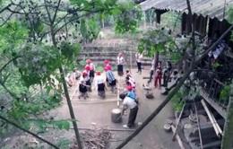 """Đón xem phim tài liệu """"Ở nơi rừng hát"""" (20h, VTV4)"""