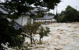 Nhật Bản: Gần 300 túi chất thải phóng xạ bị cuốn trôi trong nước lũ