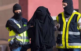 Áo bắt hai nghi can liên quan đến vụ khủng bố Paris