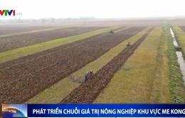 Phát triển chuỗi giá trị nông nghiệp tiểu vùng Mekong