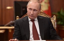 Nga: Tỷ lệ ủng hộ Tổng thống Putin cao kỷ lục
