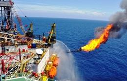 Mâu thuẫn giá xăng và lãi của DN xăng dầu