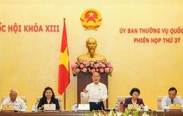 Ủy ban Thường vụ Quốc hội  thảo luận về tình hình án oan sai