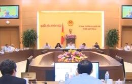 Sau 8 năm gia nhập WTO, Việt Nam chuyển biến tích cực trên mọi mặt