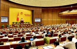 Chương trình làm việc ngày 12/11 của Quốc hội