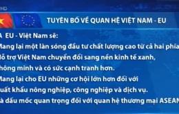 Tuyên bố về quan hệ Việt Nam - EU
