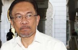 Malaysia: Lãnh đạo đảng đối lập bị cáo buộc quan hệ đồng tính