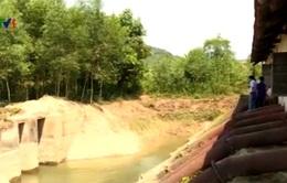 Quảng Bình: Hơn 1.000 ha ruộng không thể canh tác do hạn hán