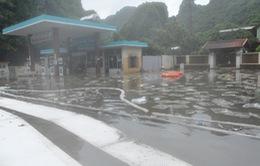 Quảng Ninh: Cấm phương tiện lưu thông qua khu vực tràn xăng dầu