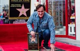 Quentin Tarantino nhận ngôi sao trên Đại lộ Danh vọng Hollywood