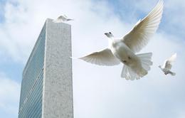 Hôm nay (21/9), Ngày Quốc tế hòa bình