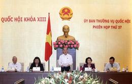 Thường vụ Quốc hội cho ý kiến vào Bộ luật hình sự sửa đổi