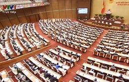 Quốc hội thảo luận về án oan, sai và bồi thường oan, sai trong tố tụng
