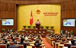 Chính phủ đề nghị bổ sung thêm quy định về thuế chống bán phá giá