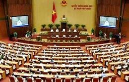 Quốc hội thảo luận dự thảo Luật Tố tụng hình sự (sửa đổi)