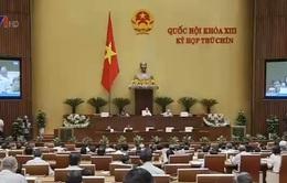 Quốc hội thảo luậnDự thảo Luật Bầu cử đại biểu Quốc hội