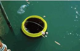 Thùng rác tự động làm nước biển