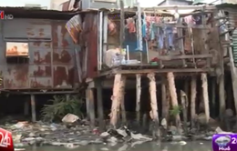 TP.HCM: Rạch Xuyên Tâm ô nhiễm nghiêm trọng