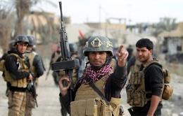 Iraq sẽ giải phóng đất nước khỏi IS trong năm 2016