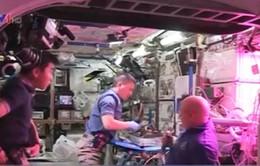 Thu hoạch rau trên trạm vũ trụ quốc tế