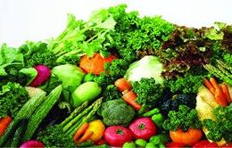 Tạo thói quen ăn uống tích cực để ngừa ung thư