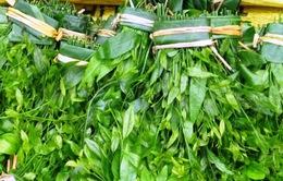 Rau Sắng - Đặc sản vùng đất Phật Hương Sơn