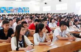 3 tiêu chí xác định chỉ tiêu tuyển sinh đại học