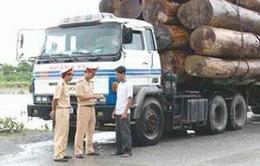 Xử lý triệt để tình trạng chở hàng quá tải