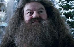 Nam diễn viên trong phim Harry Potter phải nhập viện khẩn cấp