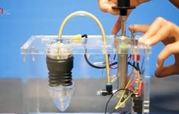 Chế tạo thành công cây robot thông minh