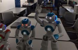 Robot sẽ có khả năng tự nhận thức như người?