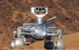 Robot có thay thế hoàn toàn con người làm việc?