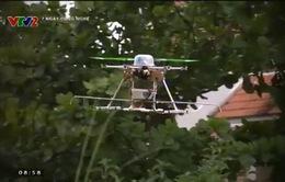 Mô hình robot phun thuốc trừ sâu
