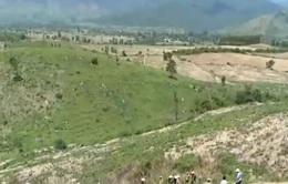 Trồng rừng thay thế tại khu vực Tây Nguyên không đạt kế hoạch